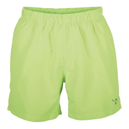 Hlače Chiemsee GREGORY boardshorts - 802 Green Gecko